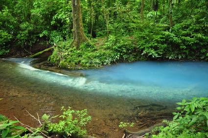 Rio Celeste en el Parque Nacional Volcan Tenorio, Costa Rica